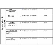Physical Characteristics of Animals Caracteristicas Fisicas de los Animales